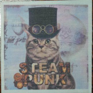 steampunk kat blauw