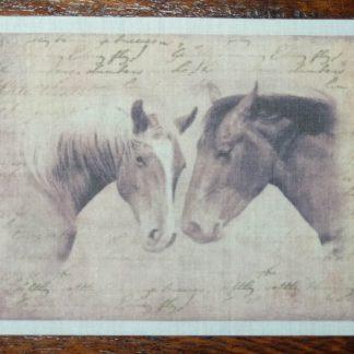 paardenhoofden
